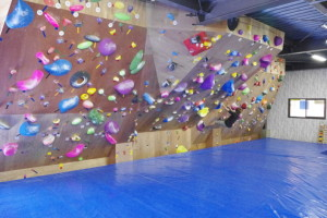 bouldering-navi-gym-be-born1