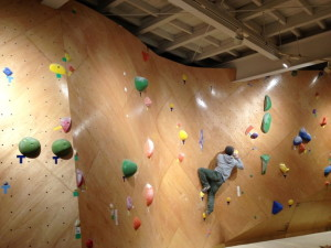bouldering-navi-gym-fish-and-bird