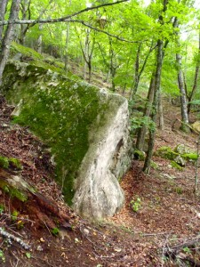 bouldering-navi-mt-mizugaki-climbing-0003
