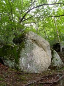 bouldering-navi-mt-mizugaki-climbing-0004